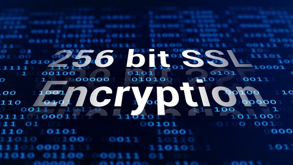 256 bit Essential SSL Certificate for Encryption - Price in Mauritius