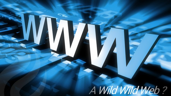 SEO importance in choosing the right domain in a Wild Wild Web